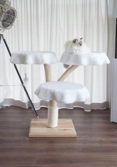 natur kratzbaum naturkratzbaum echtholz natur. Black Bedroom Furniture Sets. Home Design Ideas