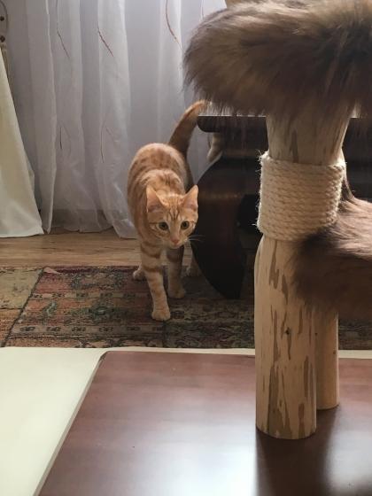 Bruno ist ganz neugierig :-)