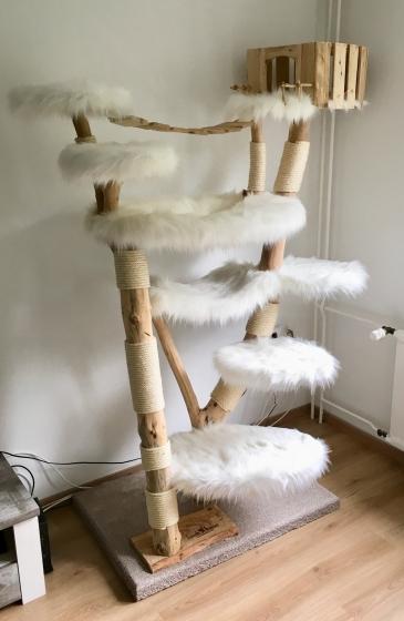 Designkratzbaum mit Motto: Indy Cat