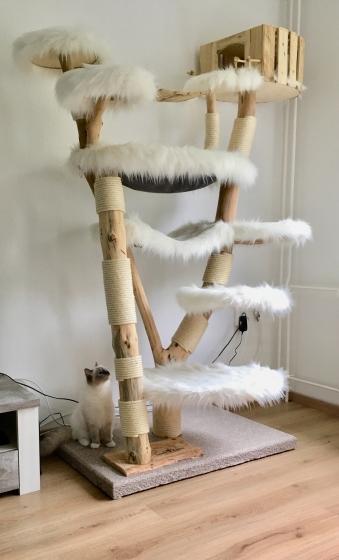 Designkratzbaum: Indy Cat - verkauft