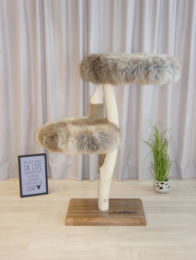 Natural wood cat tree - Canis -