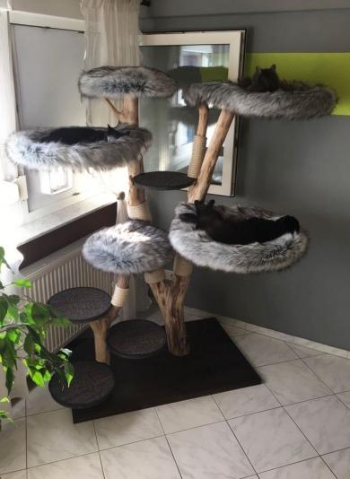 Naturkratzbaum Kimba
