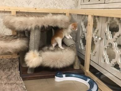 Und was ist im Schrank? Vielleicht Leckereien?