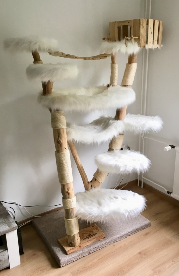 Designkratzbaum Indy Cat - verkauft